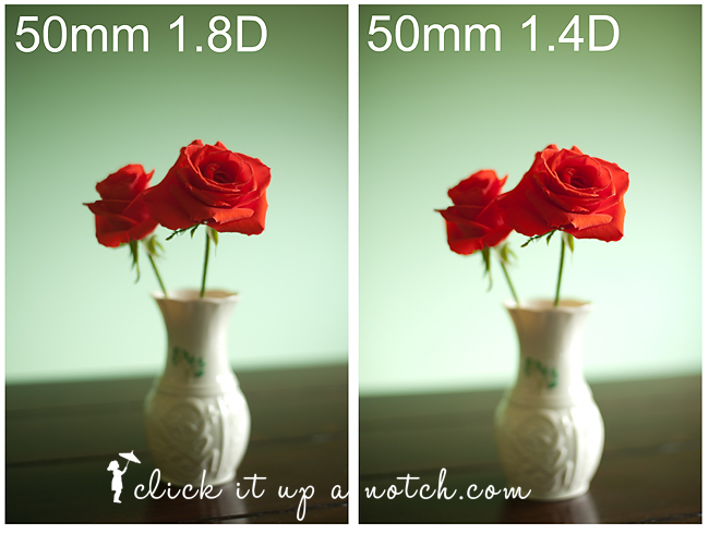 Everything You Want to Know About Camera Lenses: 50mm 1.8 ...